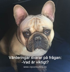 värderingar och motivation