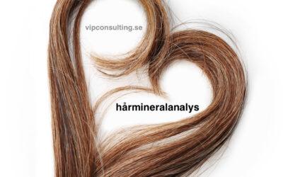 Vad är hårmineralanalys?